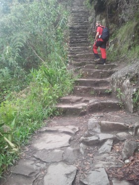 Més de 1000 escales per arribar al Machu Pichu