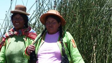 Las cholitas