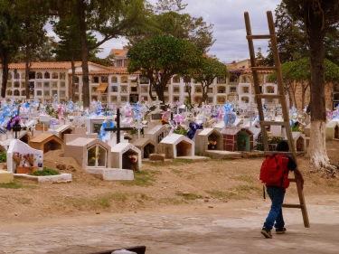 Els nens s'ofereixen per netejar les tombes més altes