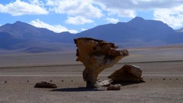 L'arbre de pedra