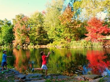 La tardor es deixa veure al Central Park