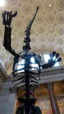 Museu d'Història Natural
