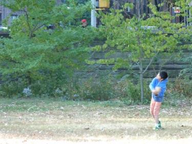 Beisbol al Central Park