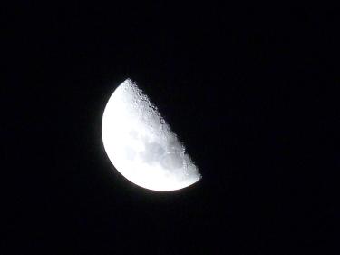 La lluna del desert