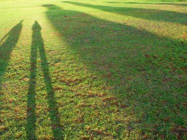 La nostra ombra i la dels moais