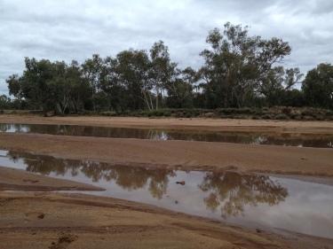 El riu d'Alice Springs amb aigua!