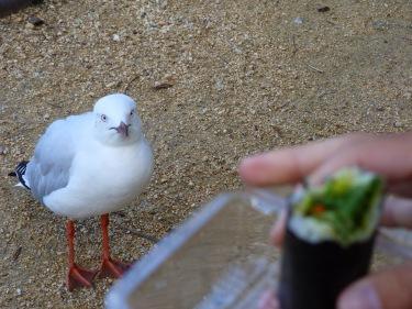 Hi ha algú que també vol sushi...