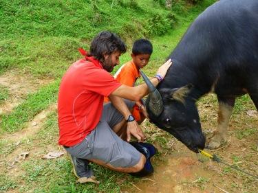 """El nen ens diu que búfal en indonesi és """"herbu"""""""