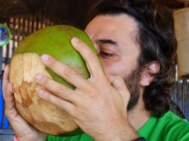 Que vols un coco? No pateixis que te'l baixen de la palmera