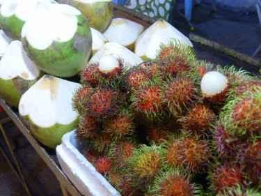 Cocos i rambatans