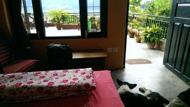 De relax a Pokhara amb un intrús a l'habitació